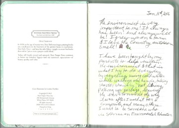 Creative Journal Jan 11