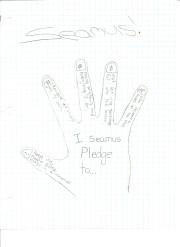 pledge-4