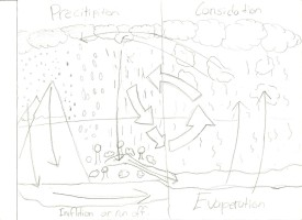 water-cycle-2